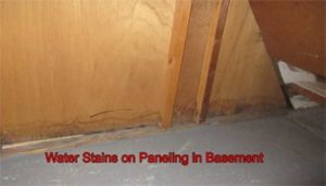 Water Stains on Paneling in Basement