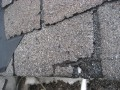 Damaged Shingles found on Roof Inspection