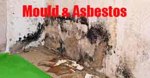 Mould-and-Asbestos-Testing